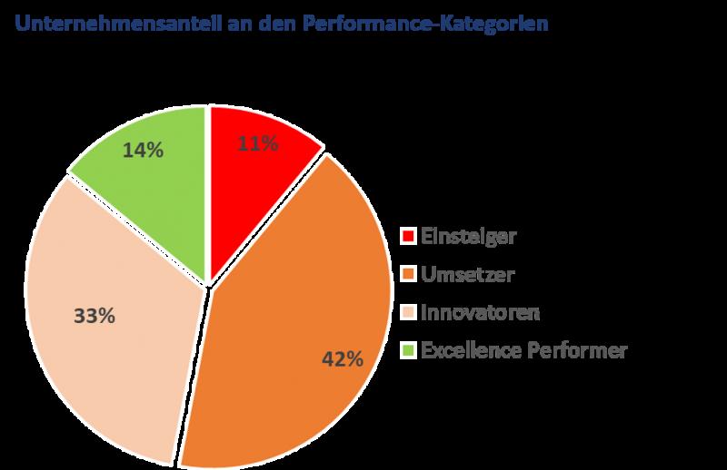 System for Excellence Performance Anteil Kategorien, Excellence Performer, Innovator, Umsetzer, Einsteiger, dankl, MCP, Spitzenreiter