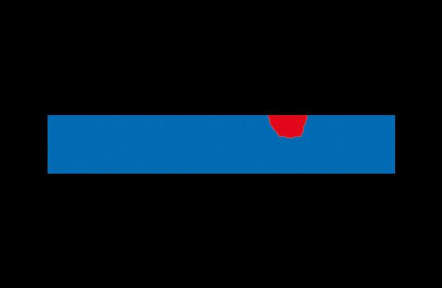 Paradine Logo
