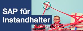 SAP für Instandhalter, Training, Orianda, dankl+partner