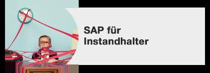 SAP für Instandhalter
